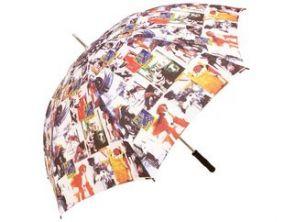 Paraply svenska nationalraser tavlor
