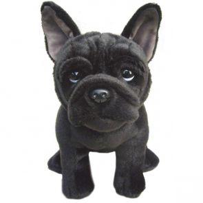 Fransk bulldogg
